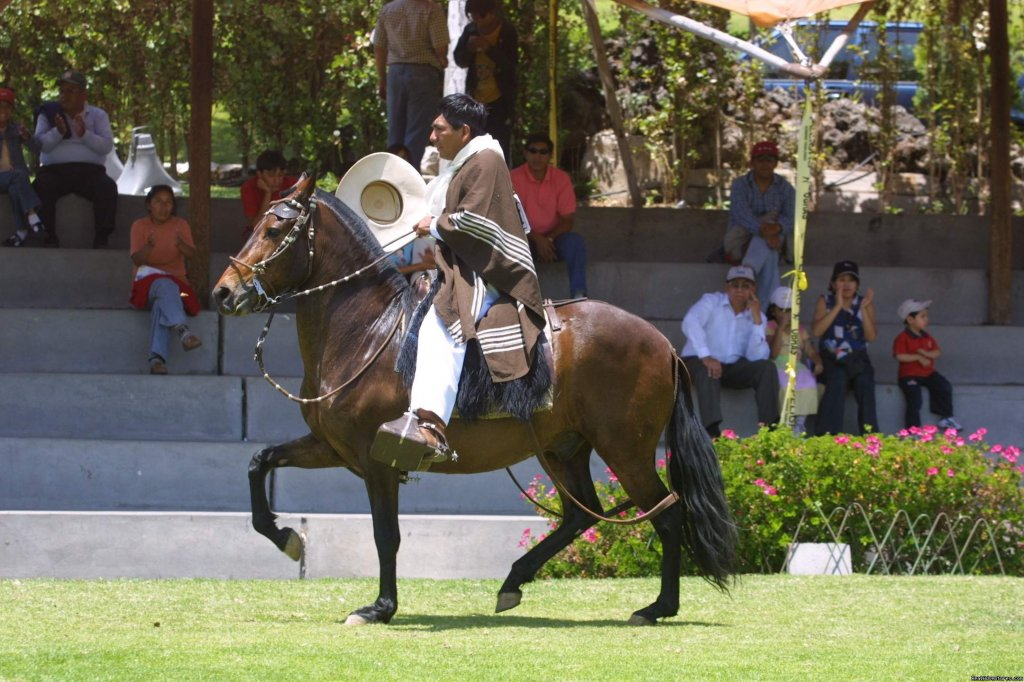 Perol Chico offers exclusive horseback riding tours high in the Andes on Peruvian Paso horses. We specialize in multi-day equestrian tours off the beaten track. Our riding centre is located in the Sacred Valley of the Incas.