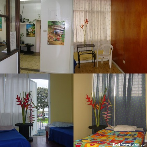 La Pampa Hostel budget hotel san jose costa rica La Pampa Hostel