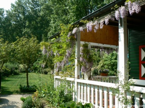 View garden - Cottage in Nature reserve between Bruges & Ghent