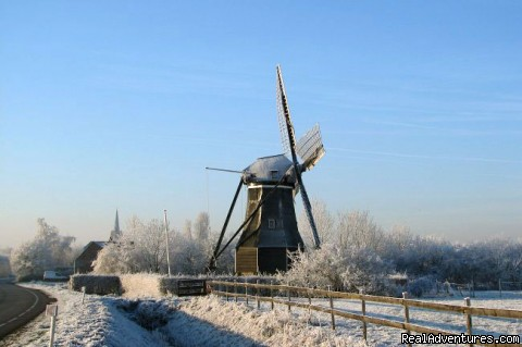 Zeeland in winter - Cottage in Nature reserve between Bruges & Ghent