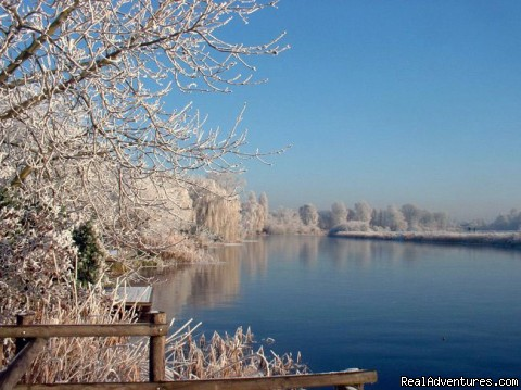 Grote Geul creek in winter - Cottage in Nature reserve between Bruges & Ghent