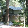 Forested Ocean View Acreage, walk to the sea. deerfern.com