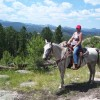 Horseback Riding for the whole family