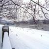 Outside- Winter