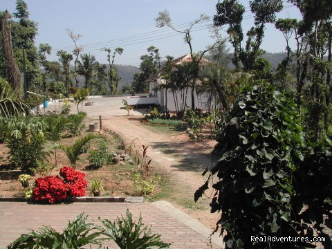 View from Planters Bungalow1 - Devagiri Retreat Homestay Bed&Breakfast Sakleshpur