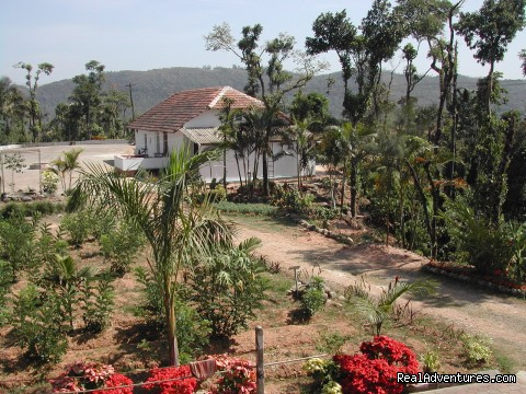 View from Planters Bungalow2 - Devagiri Retreat Homestay Bed&Breakfast Sakleshpur