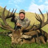 Trophy Hunting in New Zealand- Hunters Paradise NZ Hunting Guides Ashburton, New Zealand
