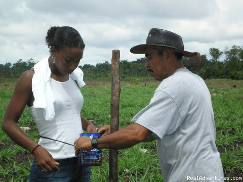 Lamanai, Traditional Farming w/ Enrique - Affordable BELIZE Eco Tours