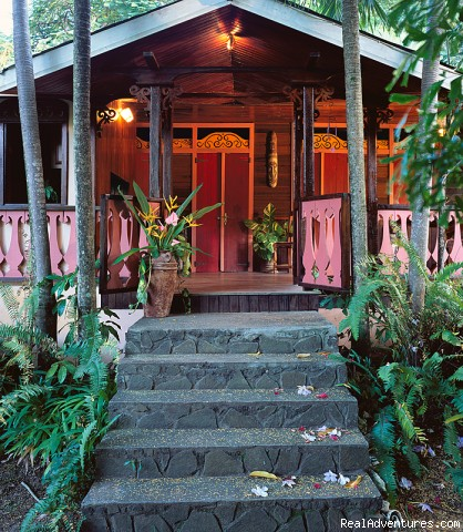 Caribbean Plantation Guesthouse Banyan Cottage