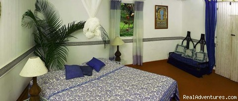 Almond Cottage bedroom - Caribbean Plantation Guesthouse