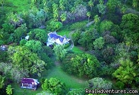 - Caribbean Plantation Guesthouse