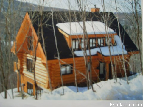 Log Cabin high in a maple wood: ski ing the mountain