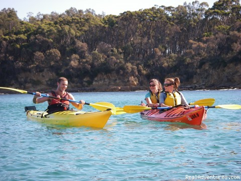 Kayaking Tours on the South Coast of NSW
