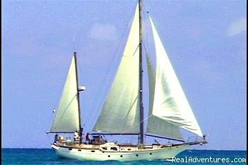 Image #1 of 11 - Caribbean Sailing Charter