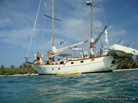 Image #8 of 11 - Caribbean Sailing Charter