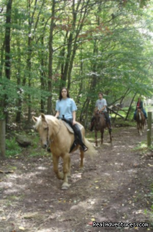 Scenic Guided Trail Rides Through The Pocono Woods
