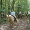 Scenic Guided Trail Rides Through The Pocono Woods White Haven, Pennsylvania Horseback Riding