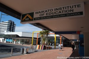 Study English in New Zealand Hamilton, New Zealand Language Schools