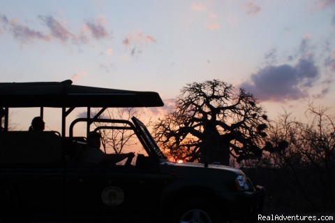 Open Vehicle Sunset - South African wildlife safaris