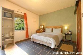 standard garden room - Malherbe Guesthouse - Montagu - Western Cape