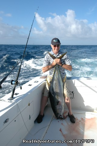 Yellowfin Tuna - Sportsfishing Charter Boat New Zealand