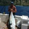 Sportsfishing Charter Boat New Zealand