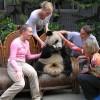 Visit to Panda Breeding Farm