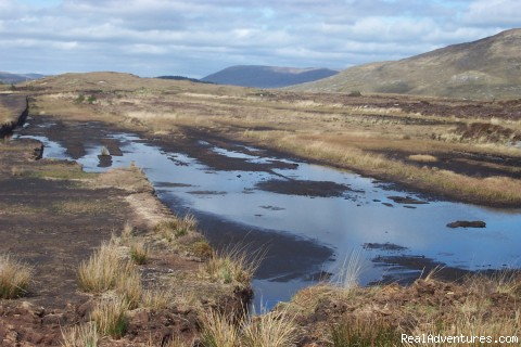 Connemara & Galway Bay Tours - Scenic Day Tours of Burren & Connemara