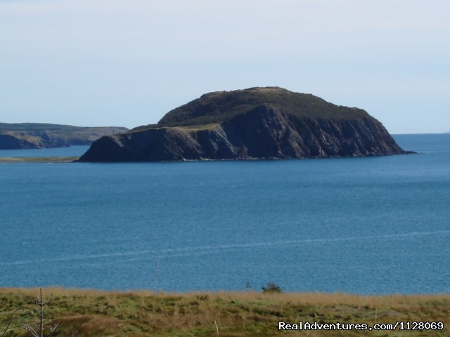view of Fox Island from Devil's Cove (#5 of 12) - Newfoundland Vacation Homes