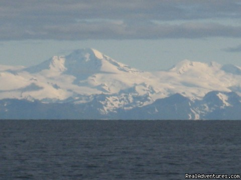 Image #2 of 5 - Exclusive Alaska Fishing Resort