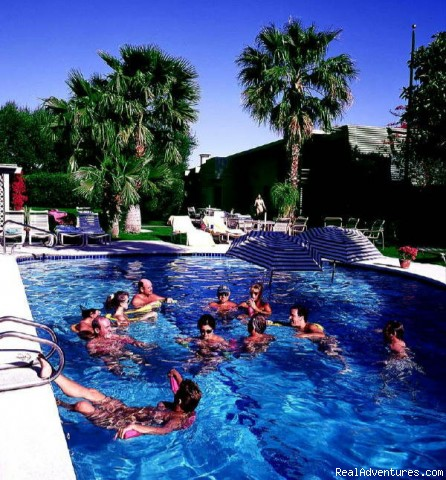 Romantic Palm Springs, CA Clothing Optional Resort: Fun in the pool at Terra Cotta Inn