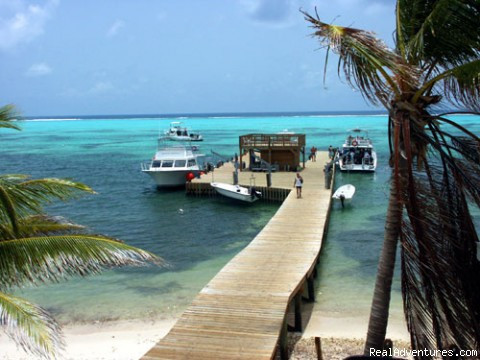 Photo #2 - Picturesque Beachfront Resort at Little Cayman