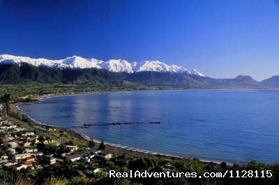 Stunning view from the Kaikoura Peninsula | Image #7/8 | Romantic getaways at  Austin Heights Scenic B&B