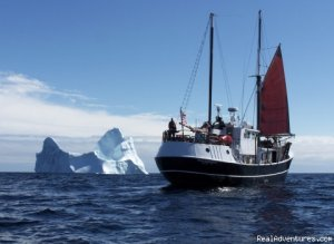 Eco Sailing Expeditions Belfast, Maine Eco Tours