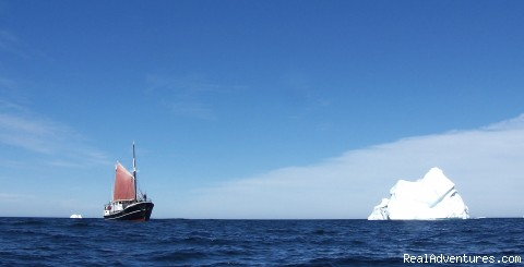 - Eco Sailing Expeditions