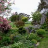 The garden at Kamahi Cottage in springtime