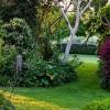 Take a walk through the garden at Kamahi