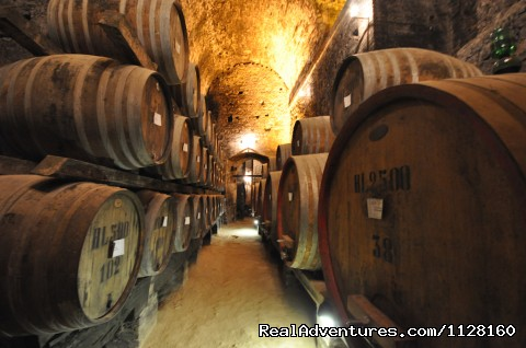 Image #7 of 26 - Italy Cooking Tours w/ Culture Discovery Vacations