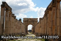 Jerash  - Create your own private tailor-made tour of Jordan