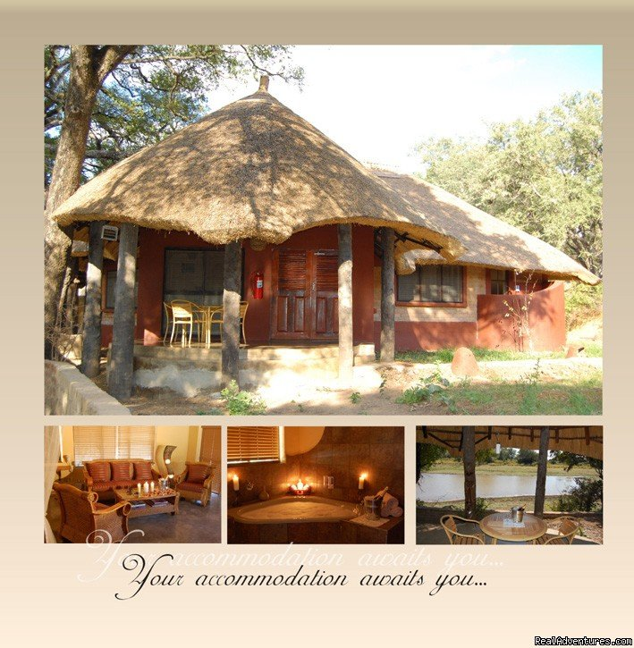 View of the Chalets | Image #17/26 | Ultimate Safari experience at Mushroom Lodge
