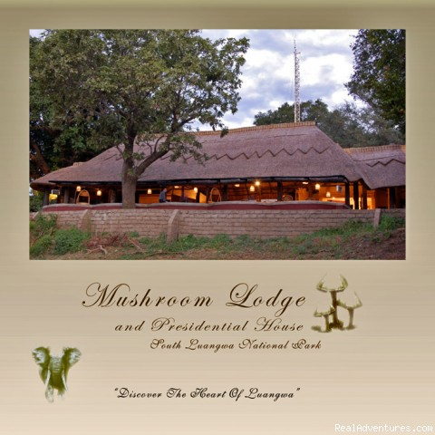 Ultimate Safari experience at Mushroom Lodge: Front view of main area.