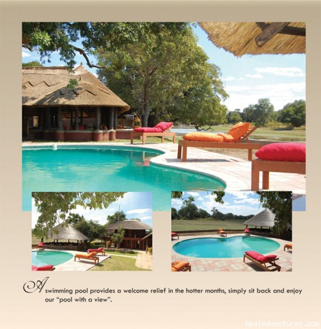 Swimming pool - Ultimate Safari experience at Mushroom Lodge