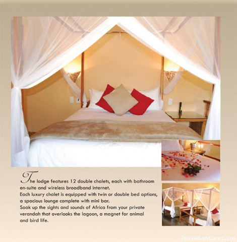 Rooms - Ultimate Safari experience at Mushroom Lodge