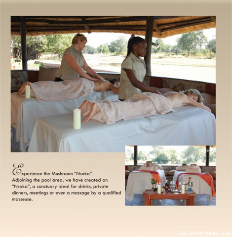 Massage Parlour - Ultimate Safari experience at Mushroom Lodge