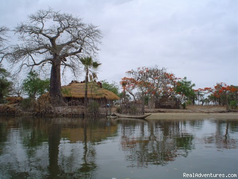 Voluntourism and Community Travel Adventures Casamance River Landscape