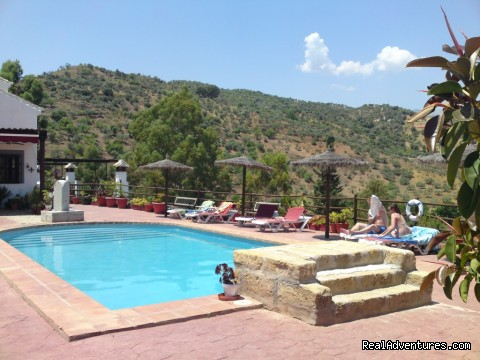 And again the swimming-pool, other view - Rural Houses & Apartments near Marbella & Ronda