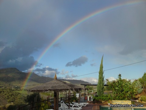 After a rainy day in January - Rural Houses & Apartments near Marbella & Ronda