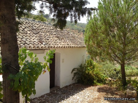 The 'casita' museum - Rural Houses & Apartments near Marbella & Ronda