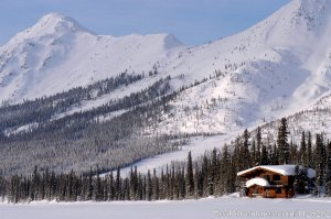 Alaska Brooks Range Dog Sledding Tours Fairbanks, Alaska Hotels & Resorts