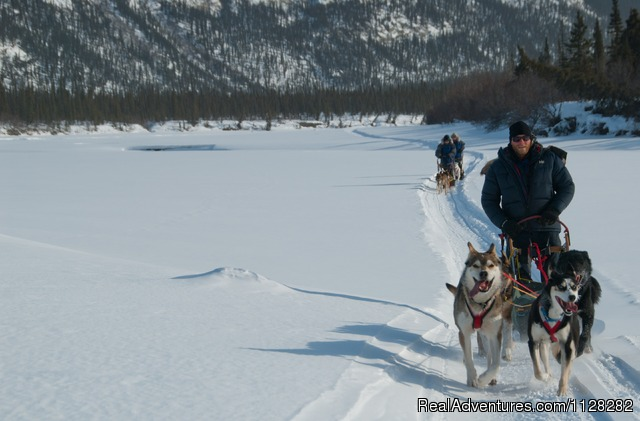 Dogsledding in Gates of the Arctic National Park - Alaska Brooks Range Dog Sledding Tours